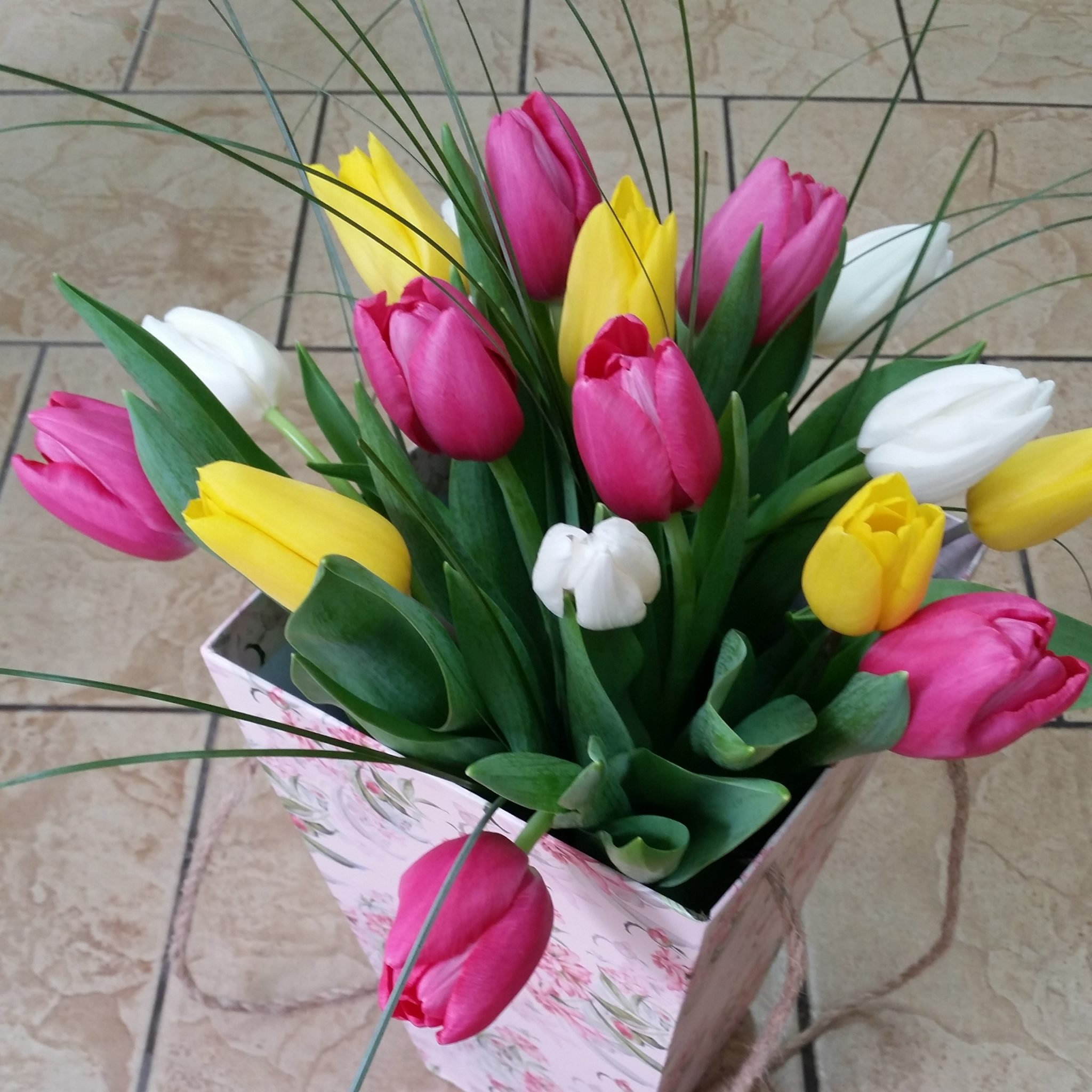 Купить цветы в таганроге круглосуточно, гвоздику мужские купить в спб